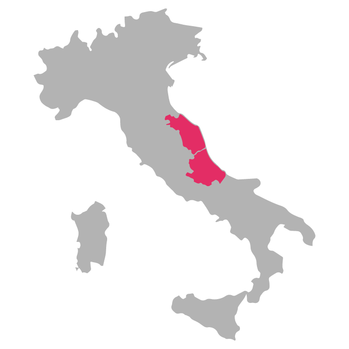 Abruzzo-and-Marche wine region highlighted in pink on a map of Italy