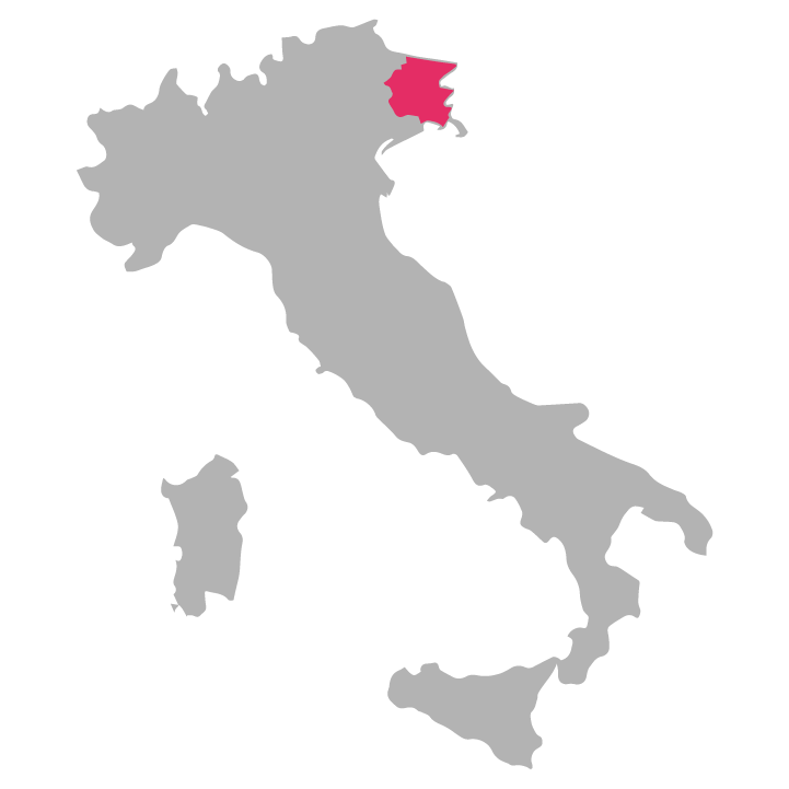 Friuli-Venezia wine region highlighted in pink on a map of Italy