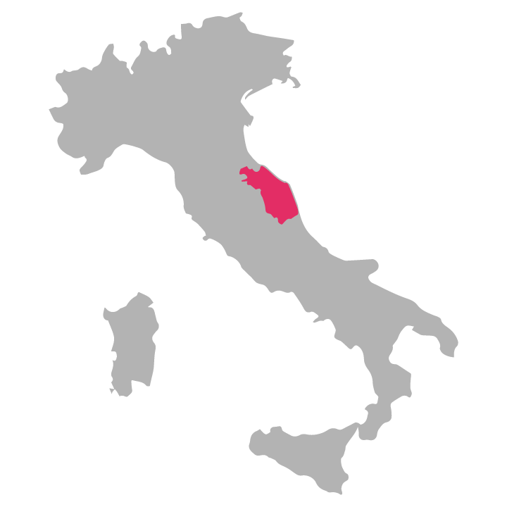 Marche wine region highlighted in pink on a map of Italy